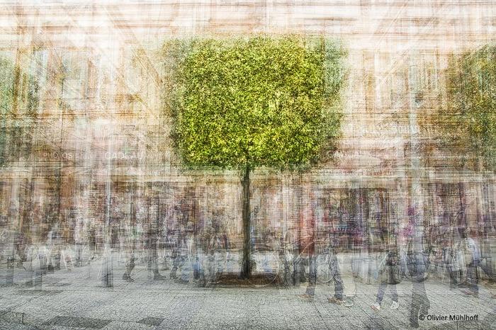 Journées du patrimoine 2018 - Exposition « Arborescence».
