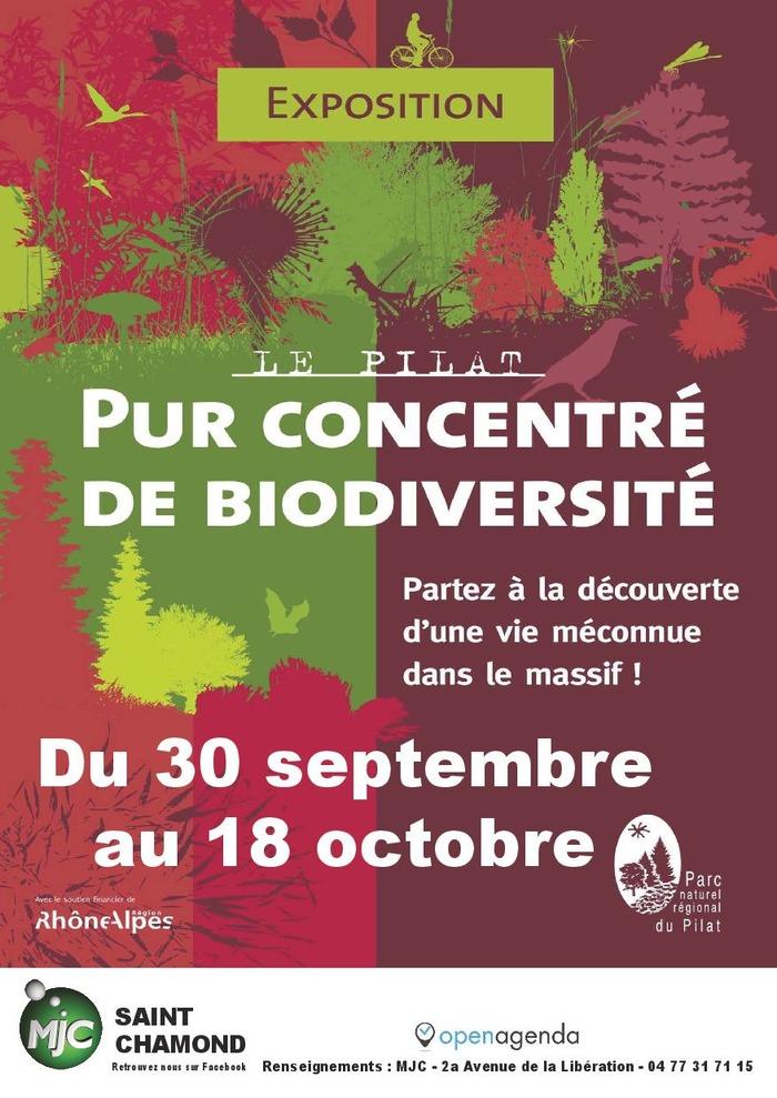 Exposition : Biodiversité