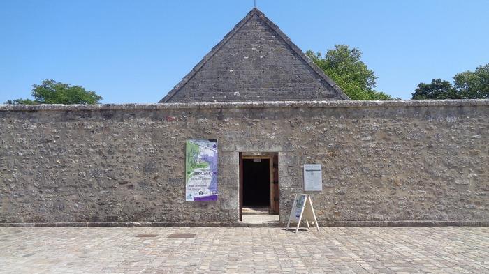 Journées du patrimoine 2018 - Exposition « La Cistude d'Europe, une tortue à point ! »