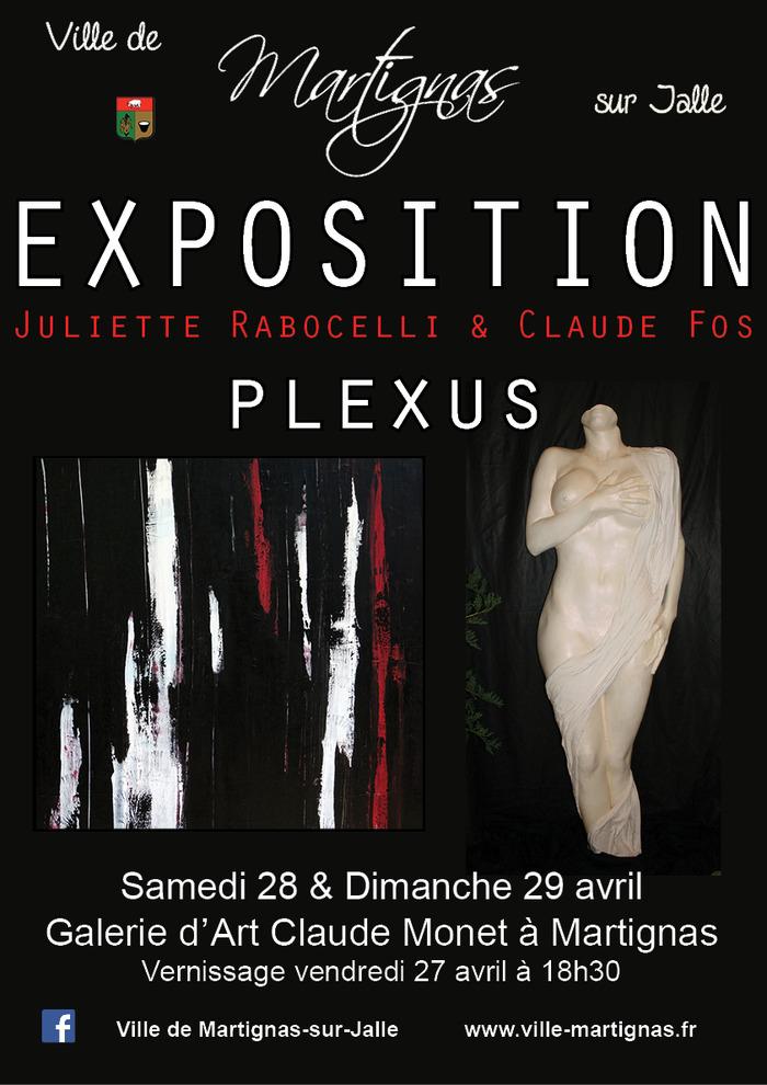 Exposition Plexus de Juliette Rabocelli et Claude Fos