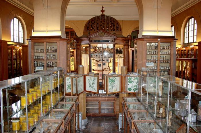 Journées du patrimoine 2018 - Faculté de pharmacie de Paris : Musée de matière médicale et ouvrages de la Bibliothèque de pharmacie