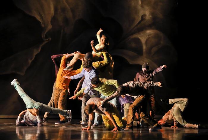 Festival de danse contemporaine de Ramallah