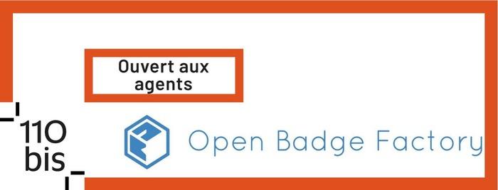 Formation en pair à pair à l'utilisation de la plateforme Open Badge Factory [110 bis]