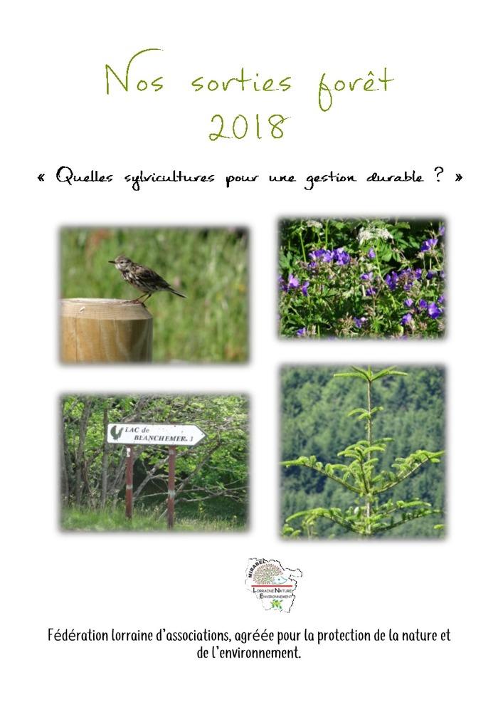 """Formation forêt  2018 """"Sylviculture de plaines et collines"""""""