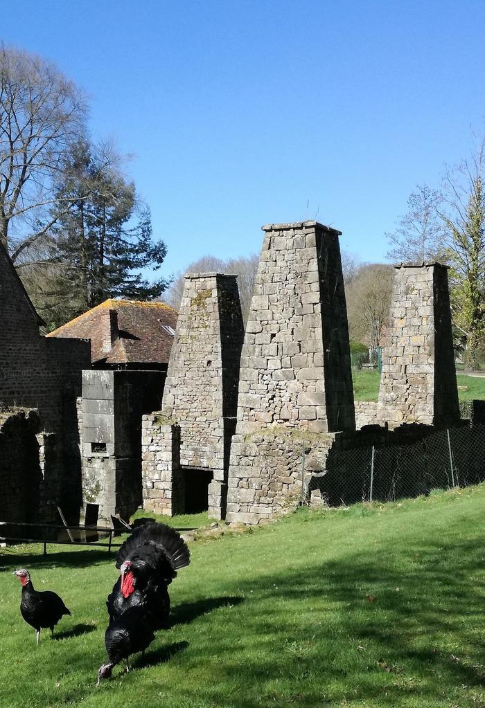 Journées du patrimoine 2018 - Visite libre des forges de Varenne