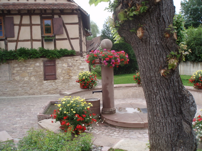Crédits image : Mairie de Scharrachbergheim-Irmstatt
