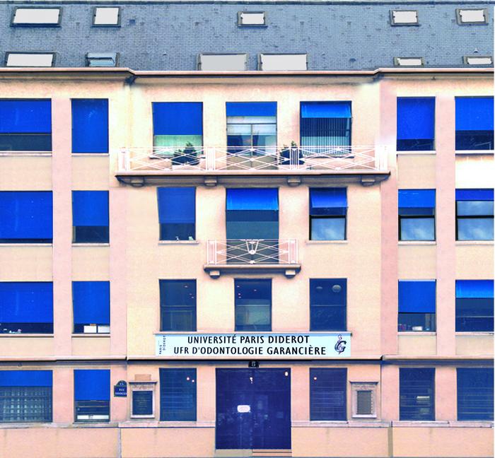 Crédits image : UFR d'Odontolgie, université Paris Diderot - Paris 7