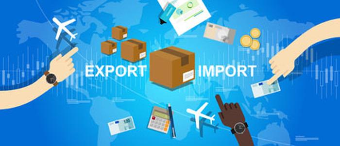 Graines d'exportateurs/importateurs