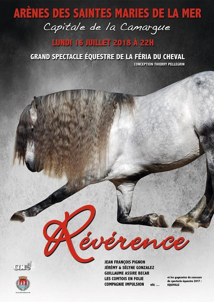Grand spectacle equestre de la Feria du Cheval, aux Saintes Maries de la Mer (1…
