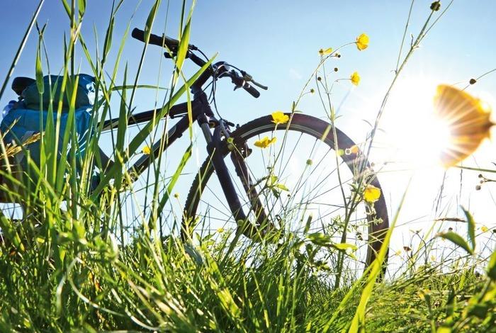 Grande balade vélo à la journée