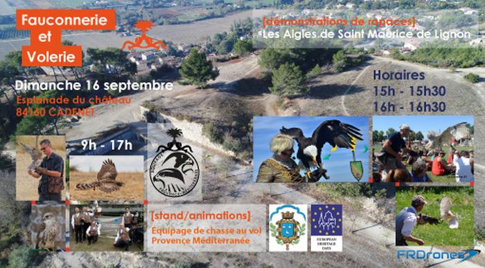 Journées du patrimoine 2018 - Au coeur de la fauconnerie provençale et du monde des rapaces