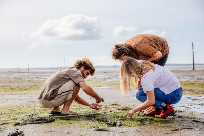 Initiation à la pêche à pied et découverte de l'estran