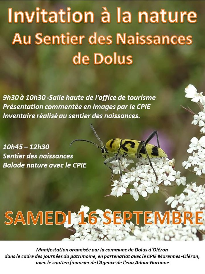 Journées du patrimoine 2017 - Invitation à la nature - découverte du patrimoine naturel en zone de marais