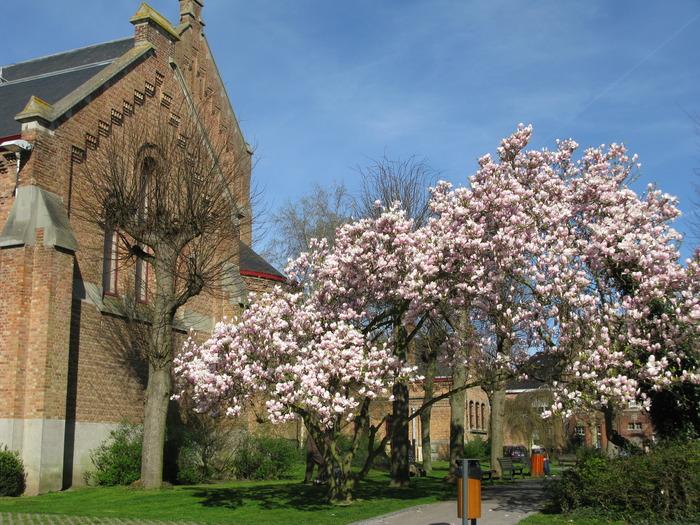 Journées du patrimoine 2018 - Visite libre du jardin éphémère