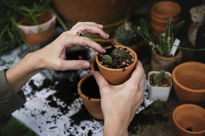 Jardinage avec le groupe jardin
