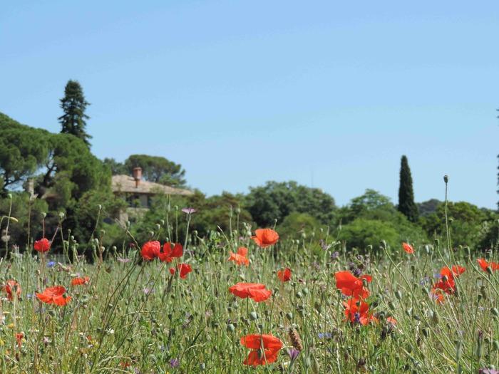 Journées du patrimoine 2018 - Jardins merveilleux