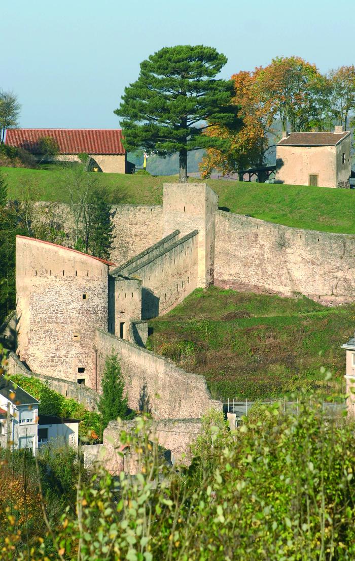 Journées du patrimoine 2018 - Château des Ducs de Lorraine