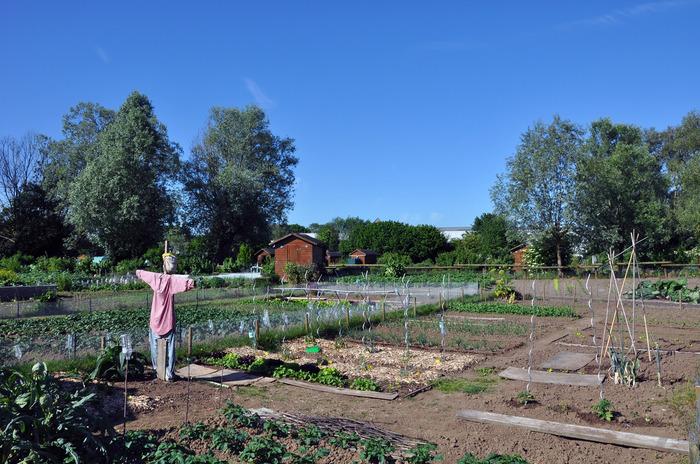 Journées du patrimoine 2018 - Journée nature et gourmande aux Jardins Familiaux