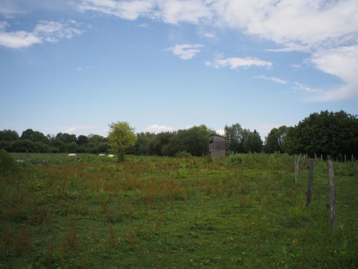 Crédits image : Cen Centre Val de Loire