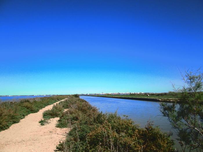 Journées du patrimoine 2018 - L'étang de l'Arnel, lieux de partage et d'échange