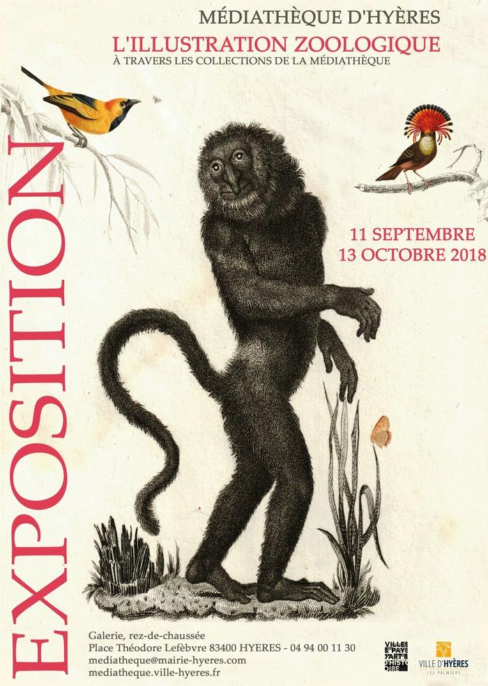 Journées du patrimoine 2018 - L'illustration zoologique à travers les collections de la médiathèque