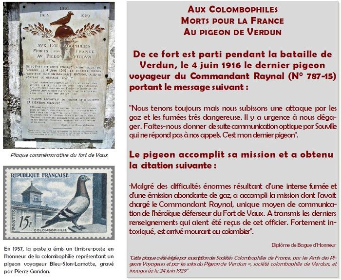 Journées du patrimoine 2018 - L'utilisation des pigeons voyageurs comme agents de liaison pendant la Grande Guerre