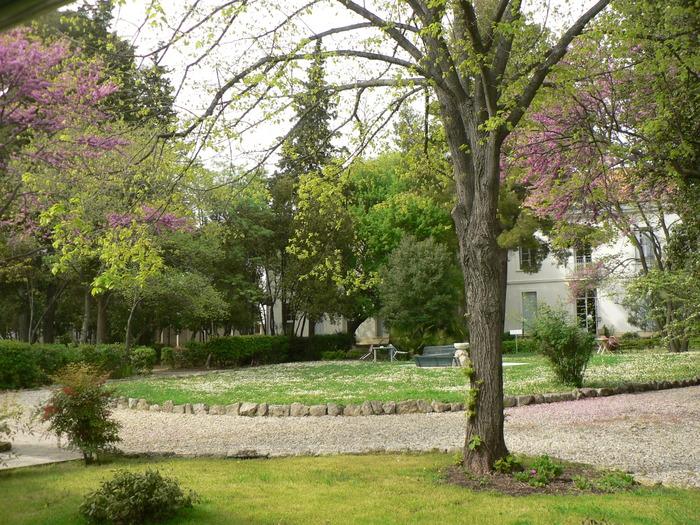 Journées du patrimoine 2018 - La Faculté de théologie protestante et sa bibliothèque, hier et aujourd'hui