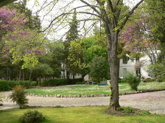 Journées du patrimoine 2017 - La Faculté de théologie protestante et sa bibliothèque hier et aujourd'hui