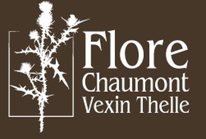 Journées du patrimoine 2018 - Visite guidée de la Flore des environs