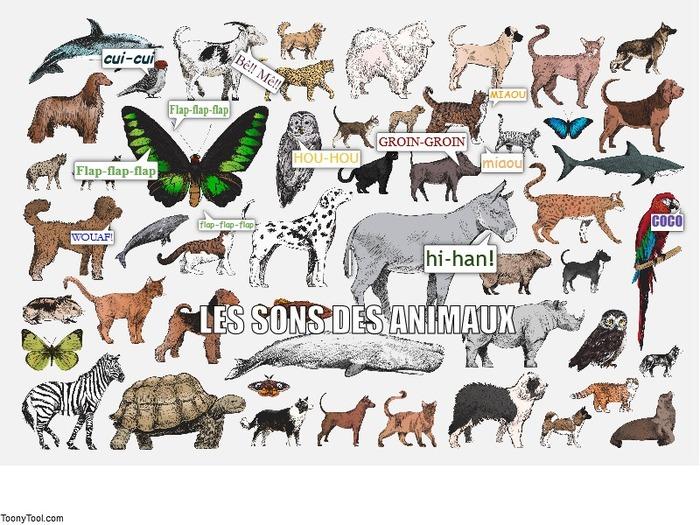 Les sons des animaux