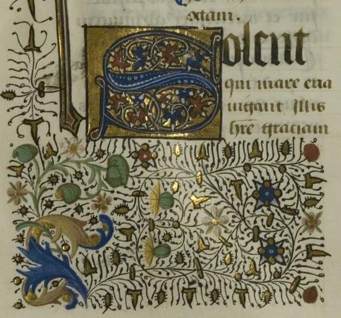 Crédits image : © Bibliothèque du Grand Auch Coeur de Gascogne
