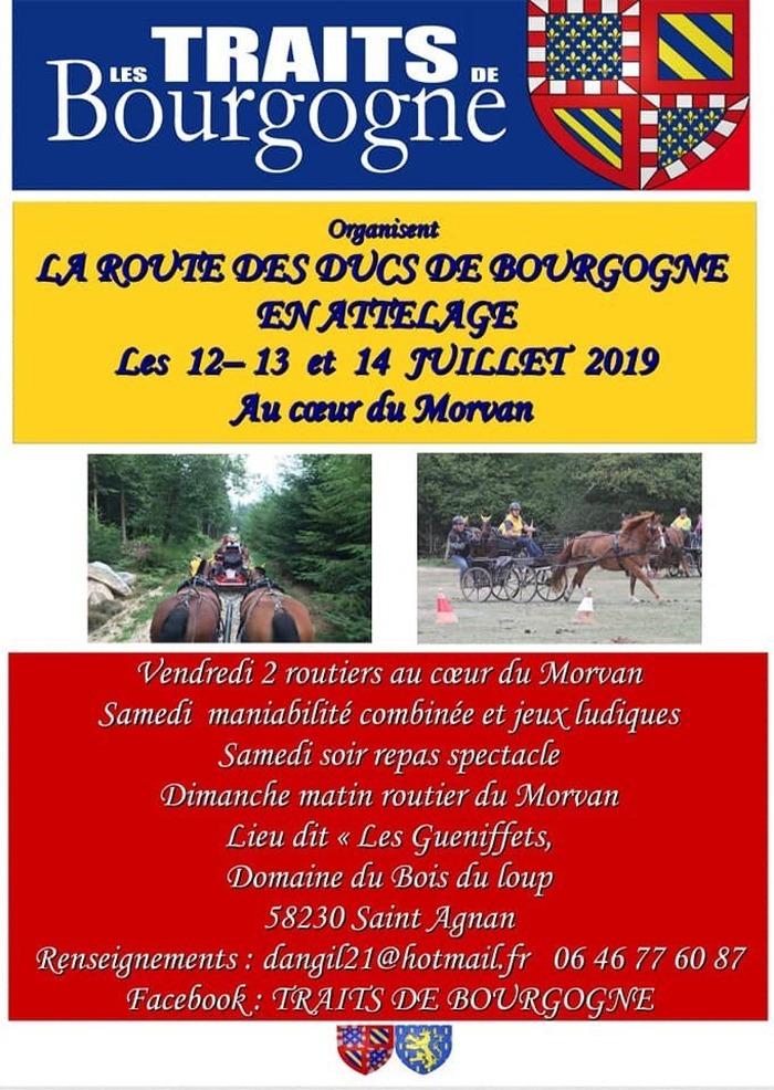 La Route des Ducs de Bourgogne en attelage