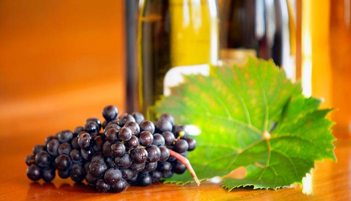 La vigne et le vin au fil de l'histoire