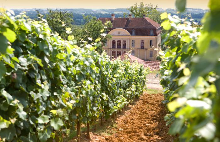 Journées du patrimoine 2018 - Le chêne, élément majeur de notre patrimoine | Agroforesterie, vignes, terroirs et paysages culturels