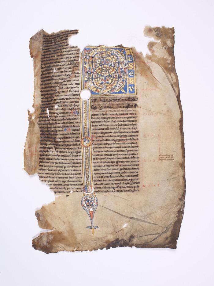 Journées du patrimoine 2017 - Le décor enluminé des manuscrits chartrains