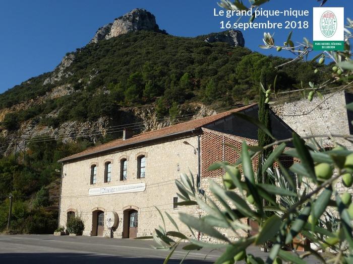 Journées du patrimoine 2018 - LE GRAND PIQUE-NIQUE : venez savourer votre Parc du Luberon à l'Écomusée de l'olivier à Volx !