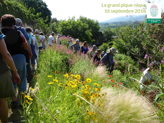 Journées du patrimoine 2018 - LE GRAND PIQUE-NIQUE : venez savourer votre Parc du Luberon au Jardin des plantes tinctoriales de Lauris !