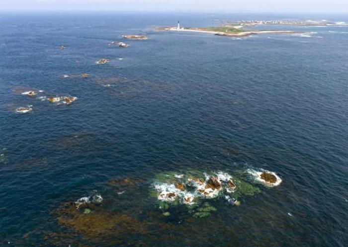 Le Parc Naturel Marin d'Iroise fête l'Europe à Océanopolis