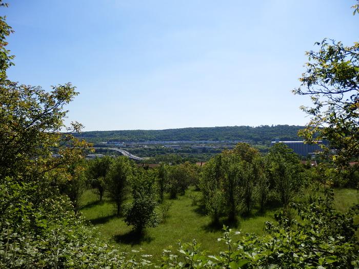 Crédits image : ville de Bouxières-aux-Dames