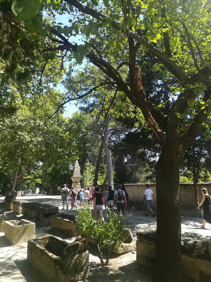Journées du patrimoine 2018 - Les Alyscamps (nécropole antique et médiévale, église romane)