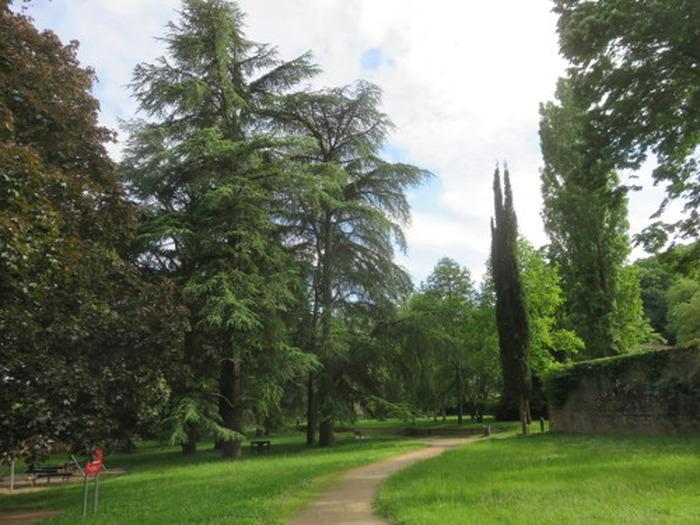 Journées du patrimoine 2018 - Visite commentée «Les arbres du parc des monts d'Or».