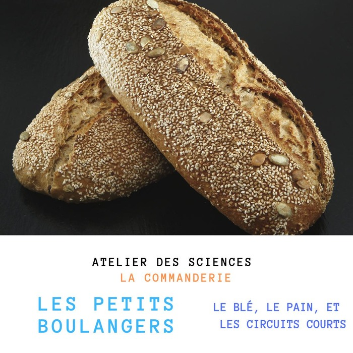 Les petits boulangers: le blé, le pain et les circuits courts
