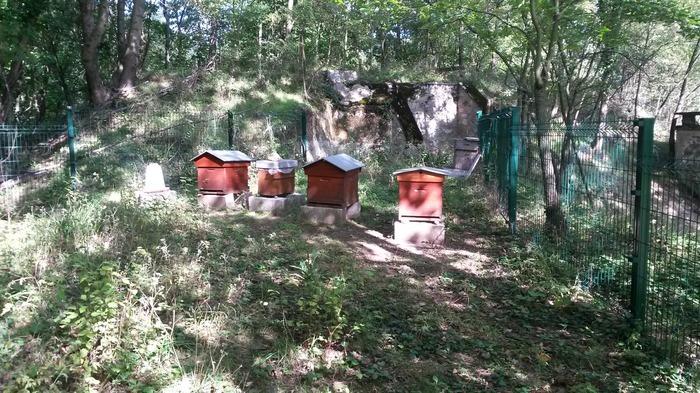 Journées du patrimoine 2017 - Les ruches du Fort