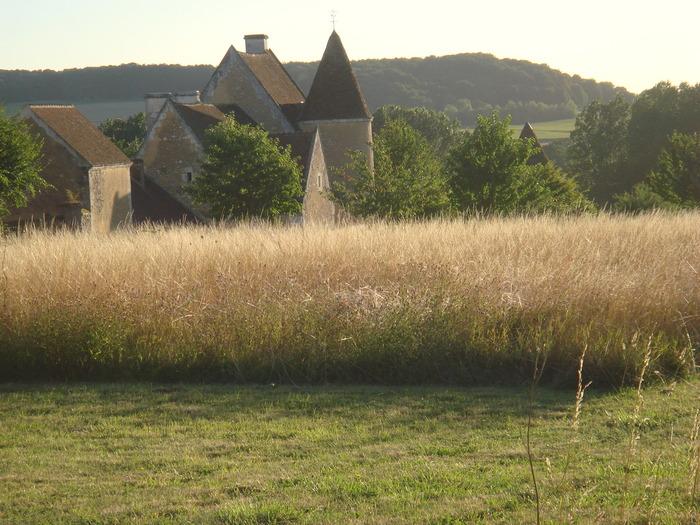 Journées du patrimoine 2018 - Visite libre des jardins du manoir de la Moussetière