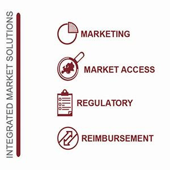Market Access Europe, why is it strategic ?