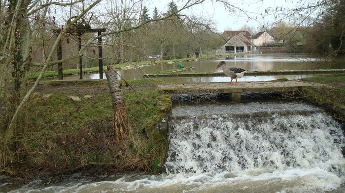Journées du patrimoine 2017 - Visite libre du moulin de la Folletière
