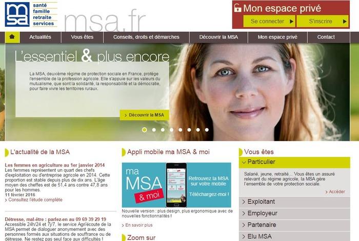 Msa En Ligne