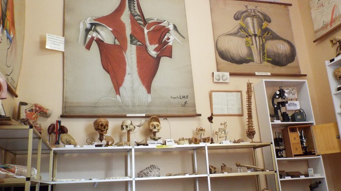 Journées du patrimoine 2018 - Musée de la chirurgie du Professeur Christian Cabrol