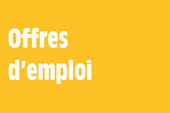 Offre emploi import export for Offre d emploi chef de cuisine