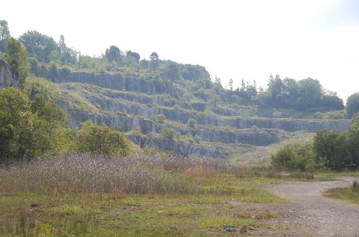 Journées du patrimoine 2018 - Paléodécouvertes à la réserve naturelle régionale de Tercis-lès-Bains